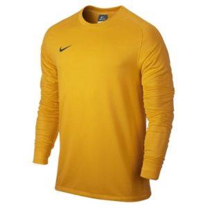 maillot-gardien-park-goalie-ii-nike-or-noir-480