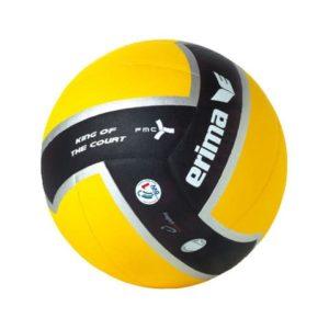 Ballon de volley-ball King of the court Erima