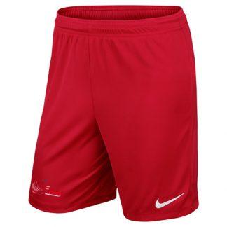 Short Nike FF Issy 725887 657