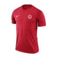 Maillot Nike Strike AS Raymond Poincare 894230-657