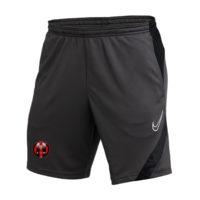 Short Nike avec logo US Hardricourt BV6924-061
