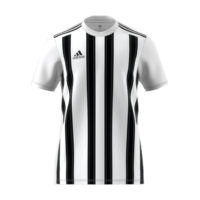 Maillot ADIDAS Striped 21 Blanc Noir GV1377 GV1382